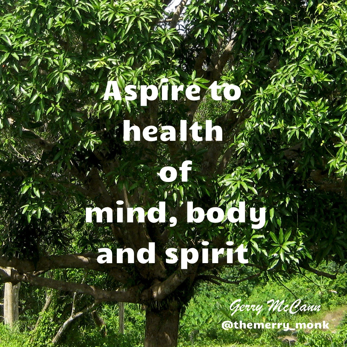 Aspiration Quote