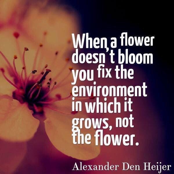 Don't Fix Flowers
