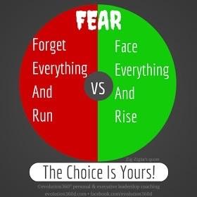 Fear Diagram