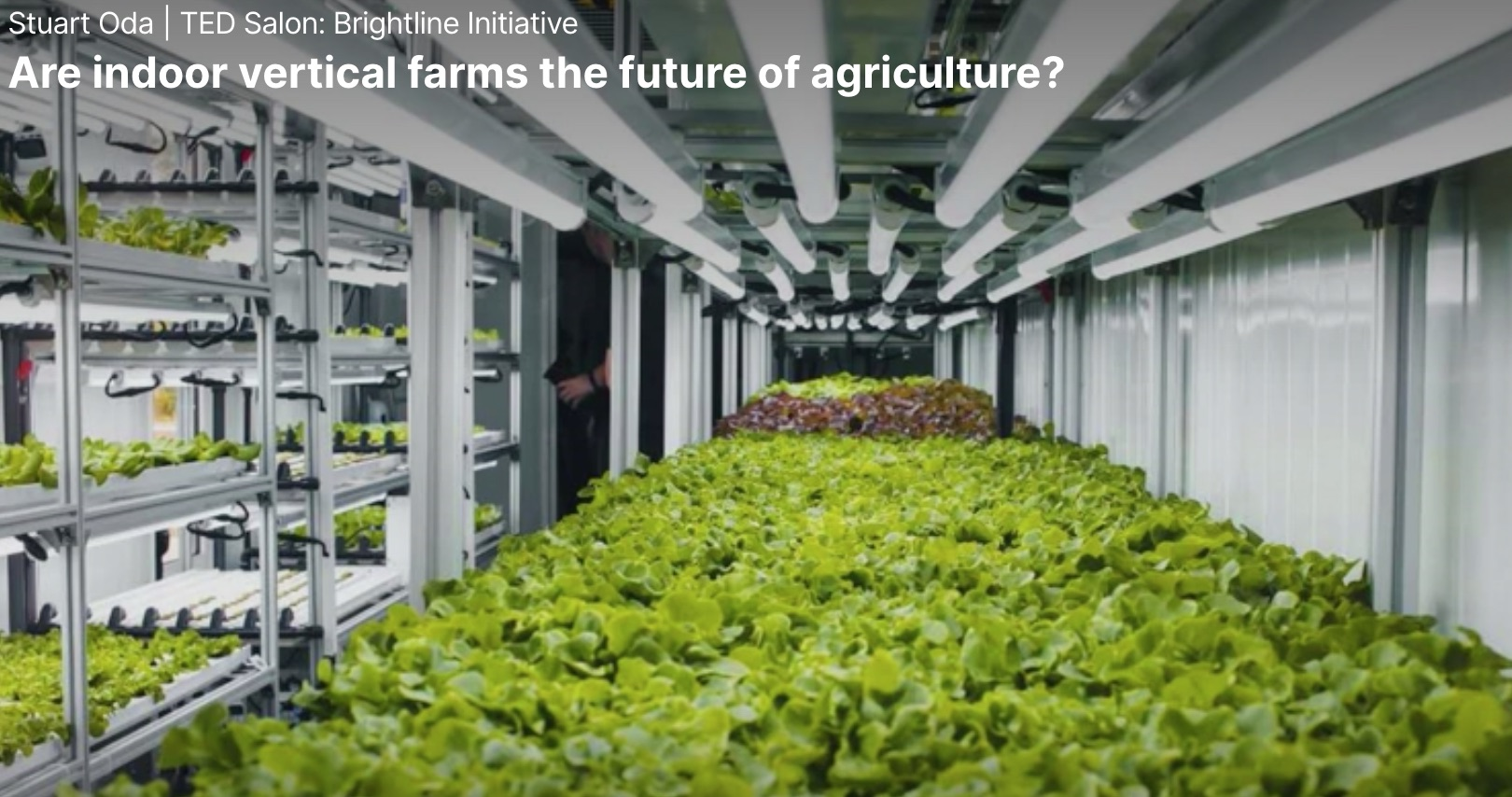 Indoor Farming