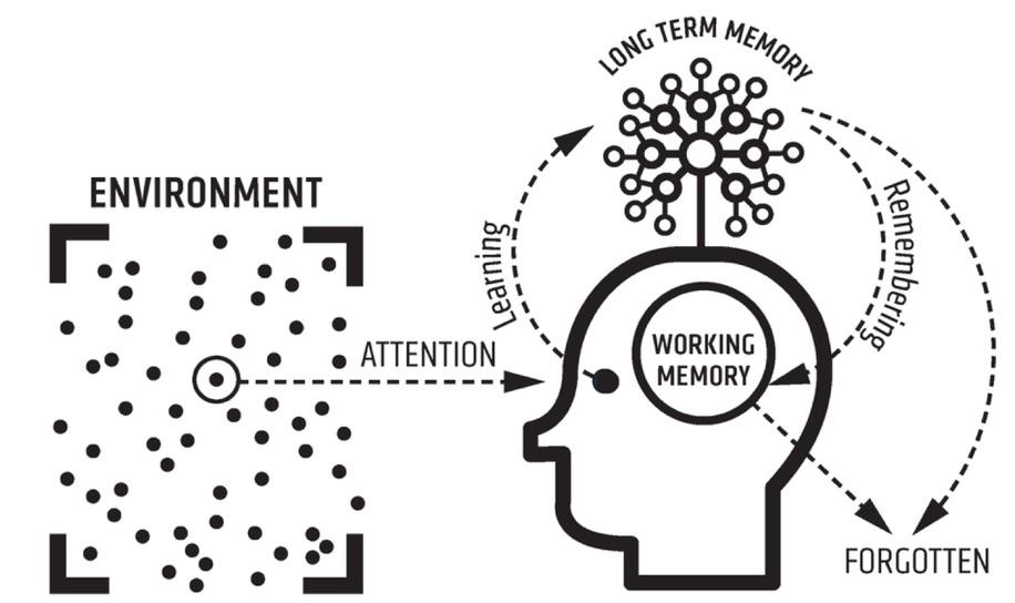 Model for learning