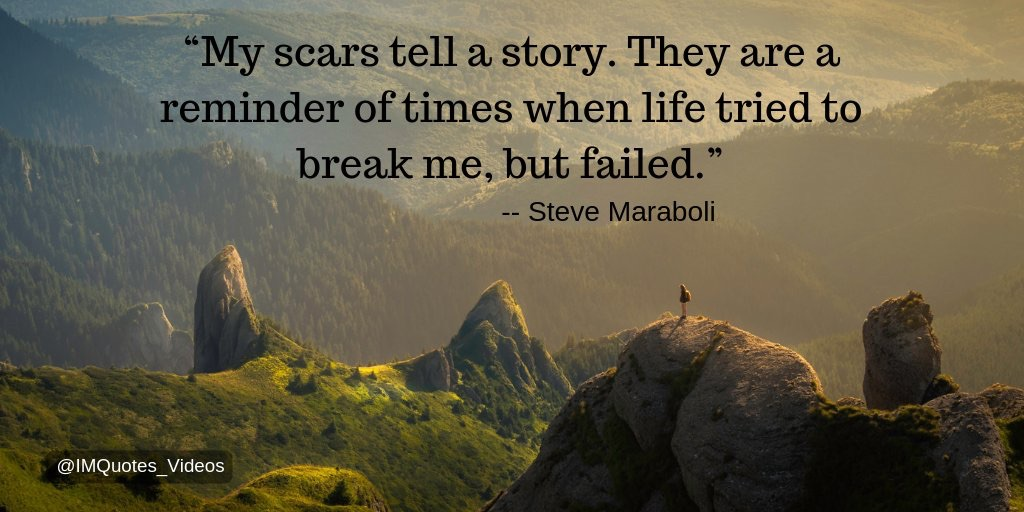My scars quote