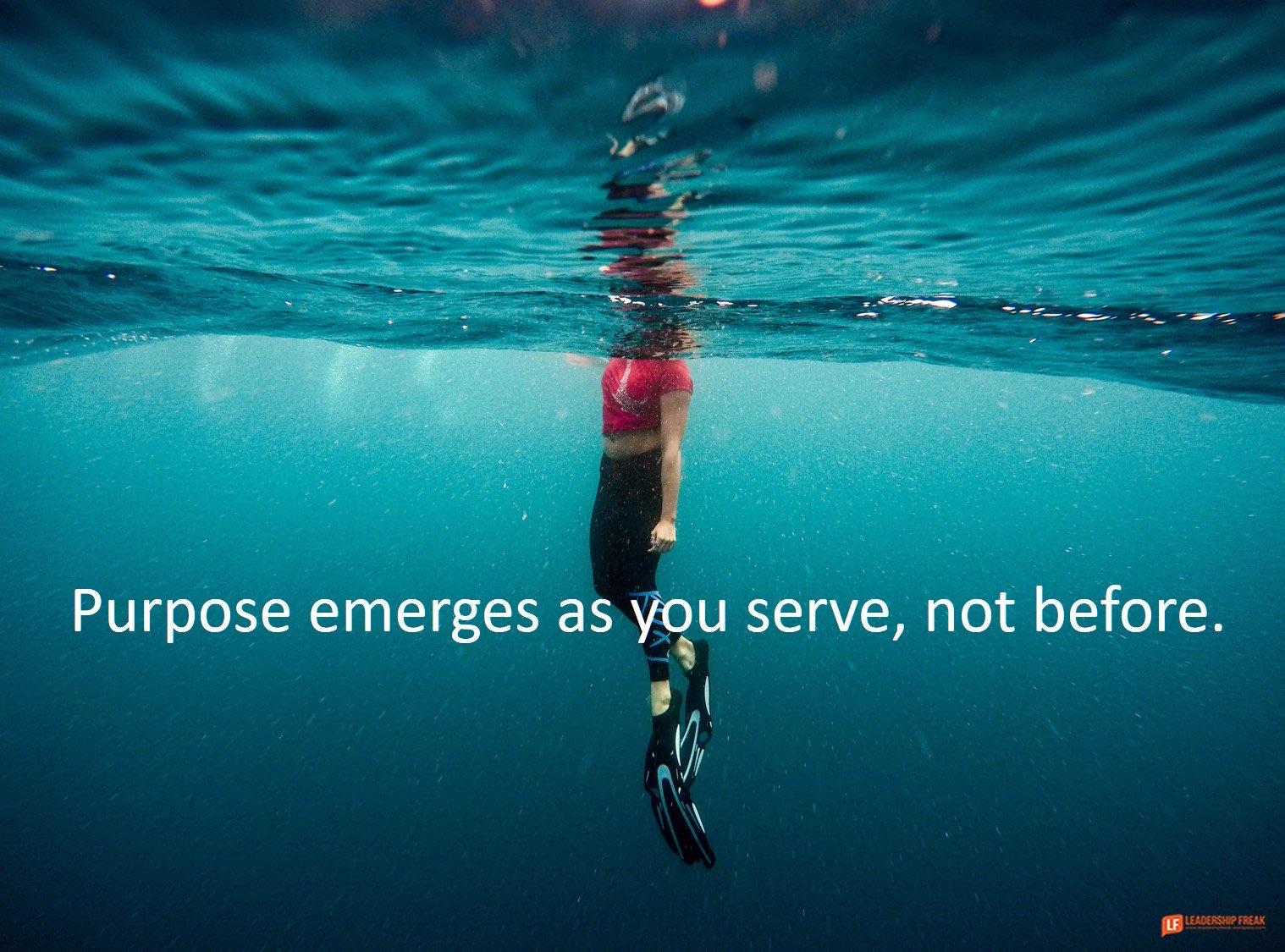 Purpose emerges