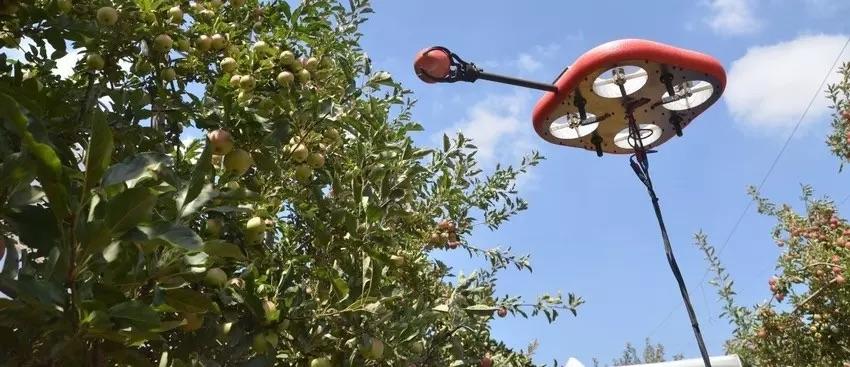 Robot Fruit PIcker